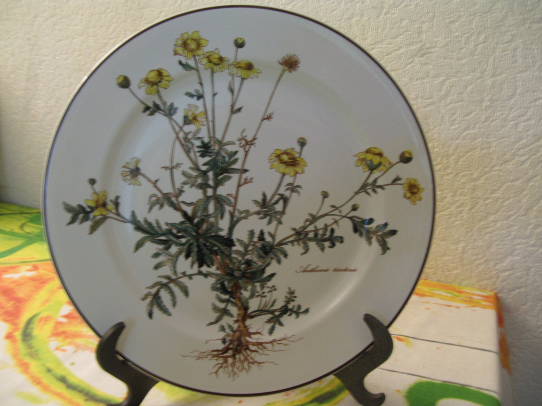 Dining plates villeroy boch botanica for Villeroy and boch plates