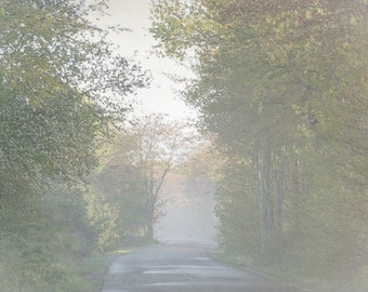 Morning walk digital download country road