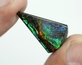 12Ct Ammolite Gemstone, Rare, Dazzling Natural Cabochon, Fancy Shape Green Flash Cabochon RG-5827