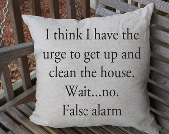 Pillow Cushion Cover, Clean my House, Funny Pillow, Sarcastic Humor, Funny Home Decor, 18 x 18 cushion