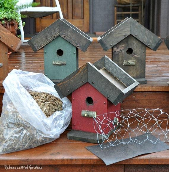 Diy Living Roof Birdhouse Succulent Birdhouse Green Roof