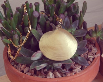 Gold Dipped Shell Necklace on Gold Chain