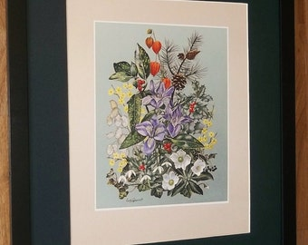 Winter - Leslie Greenwood -20''x16'' frame, rare botanical four seasons print