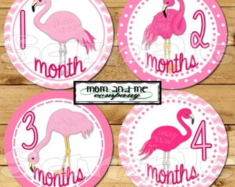 Baby girl Monthly stickers Month to Month Baby Shower gift Flamingo baby stickers bird Milestone stickers Onepiece infant age stickers pink