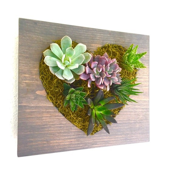 Heart succulent and cacti vertical garden love vertical for Decoration jardin cactus