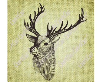 INSTANT DOWNLOAD - Digital Clip Art - Buck Deer, Graphic Download Stag Antlers Antique Clip Art for Transfers Printing
