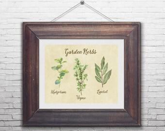 printable wall art, digital print, herbs illustration, herbs kitchen art, herbs wall art, printable herbs art, herbs wall print,  8x10