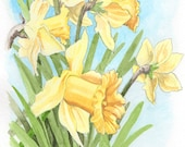 Daffodil, ORIGINAL watercolor painting, FREE shipping
