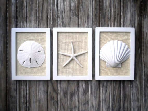 Cottage Chic Set Of Beach Wall Art Sea Shells Home Decor Nautical