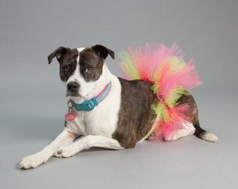 Dog Tutu -Dog parade tutu-Pet gift -Pet Clothing -Dog Gift -Dog Photo -Multi color dog tutu - Pet Accessory-Dog Costume-Pet Tutu-Pet Collar