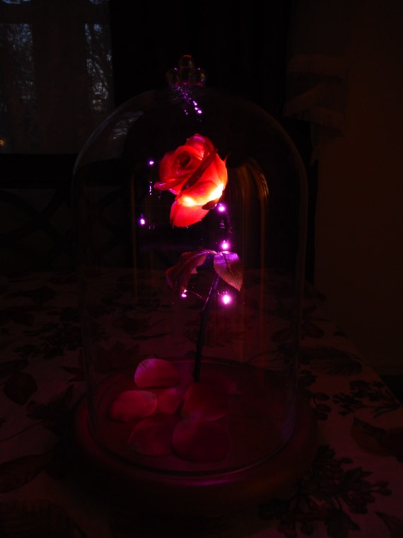 Enchanted Rose Beauty And The Beast Disney Fairy Tale