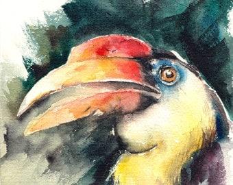 Original Watercolor Painting of Hornbill, Tropical Bird Watercolour Art