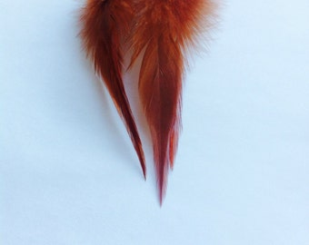 Natural Brown Feather Earrings