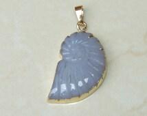 Agate Sea Shell Pendant - Spiral Seashell pendant - Agate Sea Shell Pendant. Gold Plated Edge and Bail -  22mm x 35mm - 5618