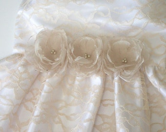 Champagne Dog Dress - Wedding Dog Dress - Flower Dog Dress - Pet Dress - Dog Clothing - Pet Clothing -Lace Dog Dress