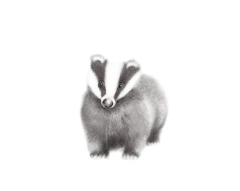 Woodland Nursery Art, Badger, Forest Animal Nursery, Baby Animal Sketch, Grey Nursery Decor, Wall Decor, Pencil Drawing, Childrens Artwork