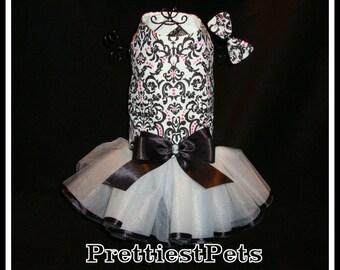 Damask Dog Dress Black and White Dog Dress Couture Dog Dress Prettiest Pets Designs!