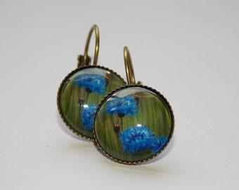 Cornflower earrings, Flower earrings, Cabochon earrings 14mm