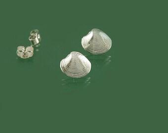 Shell stud earrings in 925 sterling silver