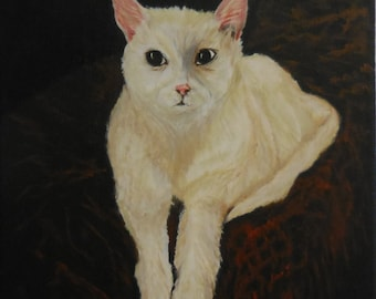 SugarBoy - Cat on Canvas