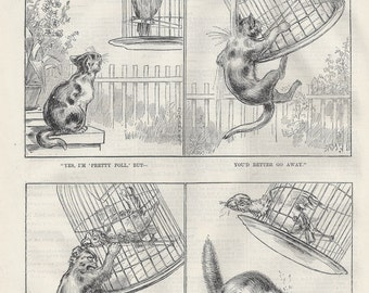 Kitty and the Parrot, original wood-engraved children's illustration, 1887