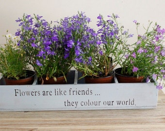 Window box planter, Flower planter, window planter, plant pot