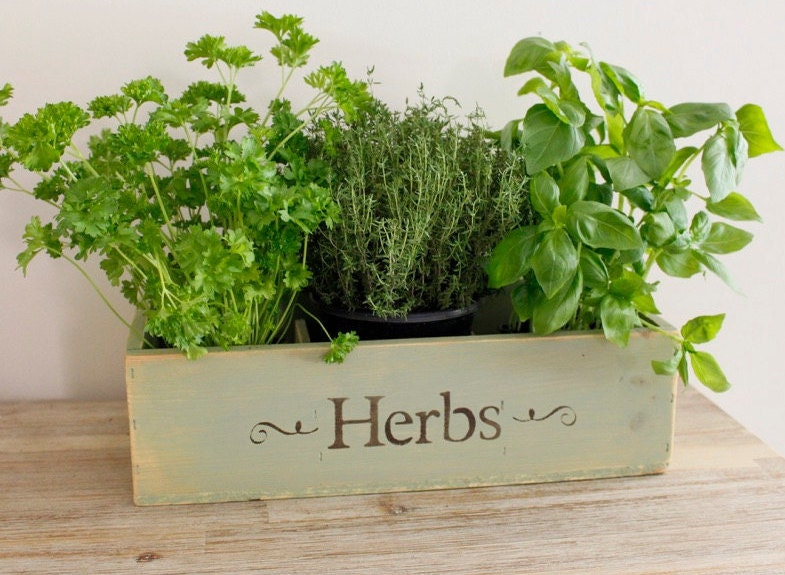 Herb Planter Box Outdoor: Herb Planter Window Box Wooden Window Box Planter Wooden