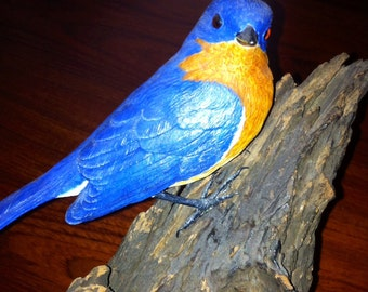 Eastern Bluebird perched on driftwood