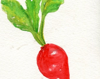 Radish watercolor painting , food wall art 4 x 6, small kitchen decor, paintings of produce, kitchen decor, original watercolor