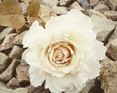 Amazing Burlap Rose in White Ivory - 5 inches - Artificial Flowers - ITEM 0285