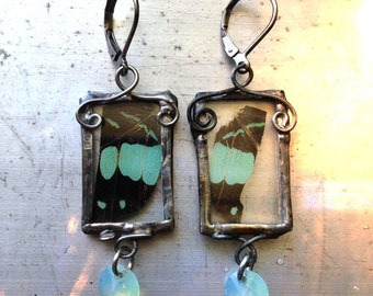 Butterfly Earrings Seafoam Green Crystal, Real Insect Jewelry