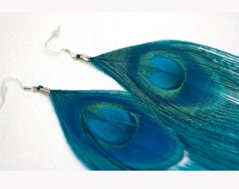 Feather Teal Peacock Earrings