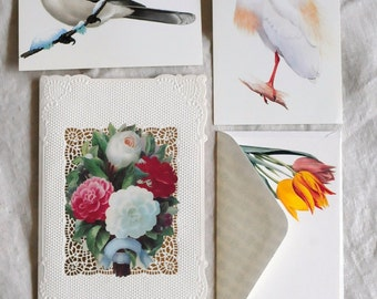 vintage birds and flowers, postcards, notecards, card