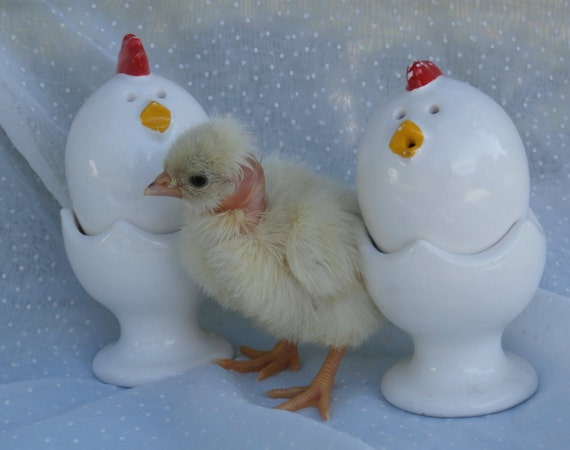 Egg shaped chicken salt and pepper shakers in egg cups vintage japan made - Egg shaped salt and pepper shakers ...