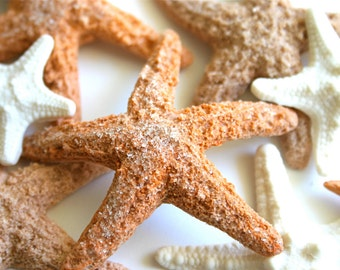 Edible Starfish / Edible Echinoderms / Edible Sea Stars - 16 - cake decoration or stand alone decorative sweet
