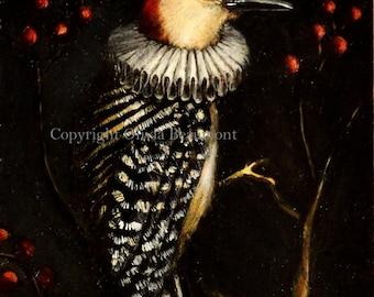 "Woodpecker - ""Ruby Emperor"" - 5x7 print"