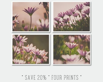 Collection of Four Flower Prints - Spring Photograph, Pink Pastel Daisies Photo, Nursery Room Decor, Shabby Chic Decor, Romantic, Floral Set