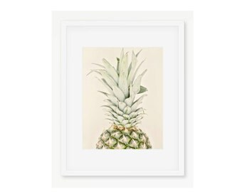 Pineapple Print, Pineapple Photography Print, Pineapple Decor, Tropical Pineapple, Kitchen Art, Food Photography, Fruit Photography