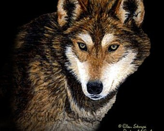 CARD, note card, wolf, wolf cards, wolf decor, wildlife decor, black, cabin decor, lodge decor, Ellen Strope, Timber wolf, Timberwolf decor