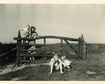 "Vintage Photo ""The Sweet Berry Farm"" Snapshot Photo Old Antique Photo Black & White Photography Found Photo Paper Ephemera Vernacular - 182"