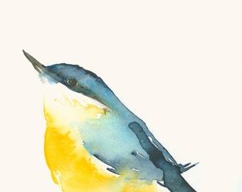 Bird Art Card Nuthatch Blank Greeting Card