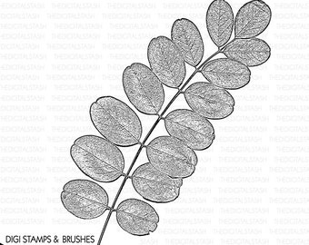 Weed Leaves Branch Clip Art - Digital Stamp and Brush - INSTANT DOWNLOAD - for Invites, Collage, Journaling, Cards, Scrapbooking, Crafts