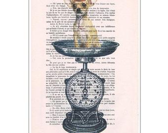 Chihuahua on scale - Coco de Paris- Chihuahua illustration, Chihuahua poster, Chihuahua drawing, Chihuahua painting, Chihuahua art