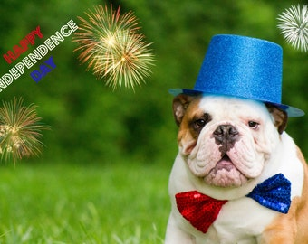 5 x 7 Patriotic English Bulldog Card