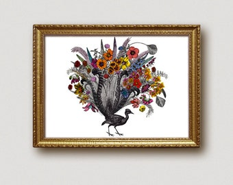 Feathered Bird Art Print - vintage bird engraving with feathers and flowers