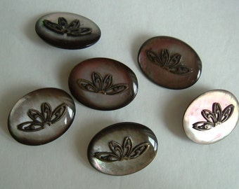 LARGE ABALONE BUTTONS