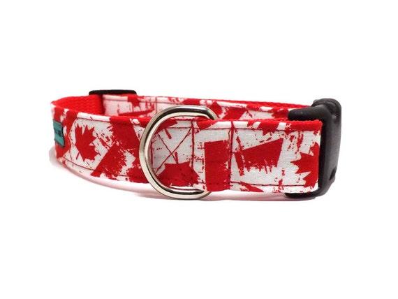 Dog Collar Canadian Flag