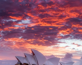 Sydney Australia Opera House Photo - Beautiful Sunset at Sydney Harbor Print - Wall Decor of Sydney Aussie Sunset Photograph - Pink, Red