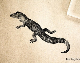 Alligator Young Rubber Stamp - 2 x 2 inches