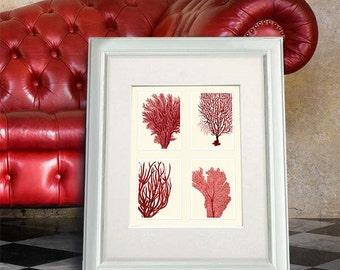 Red Coral Print on 4 Panels, Nautical print beach house decor wall art wall decor art print Nautical Decor bathroom coral picture